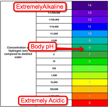acid-alkaline-diet-phscale