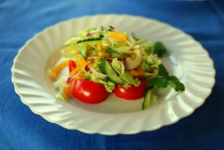 raw-food-diet-and-weight-loss-vegetable-salad-plate